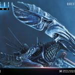 prime-1-studio-queen-alien-diorama-statue-premium-masterline-aliens-collectibles-img11
