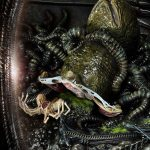 prime-1-studio-rogue-alien-battle-diorama-premium-masterline-aliens-collectibles-img36